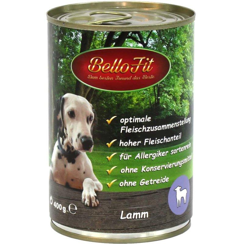 Für allergiker geeignet hunde Hunde für